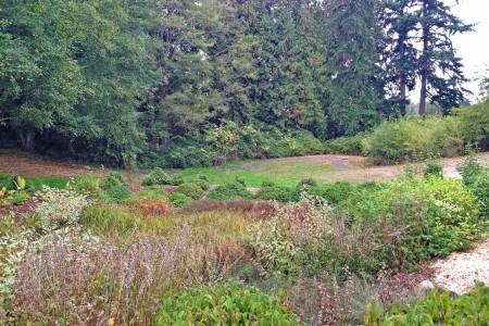 Buck Lake Native Plant Garden