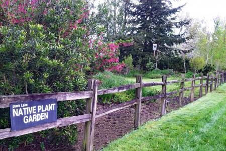 Buck Lake Native Plant Garden south entrance