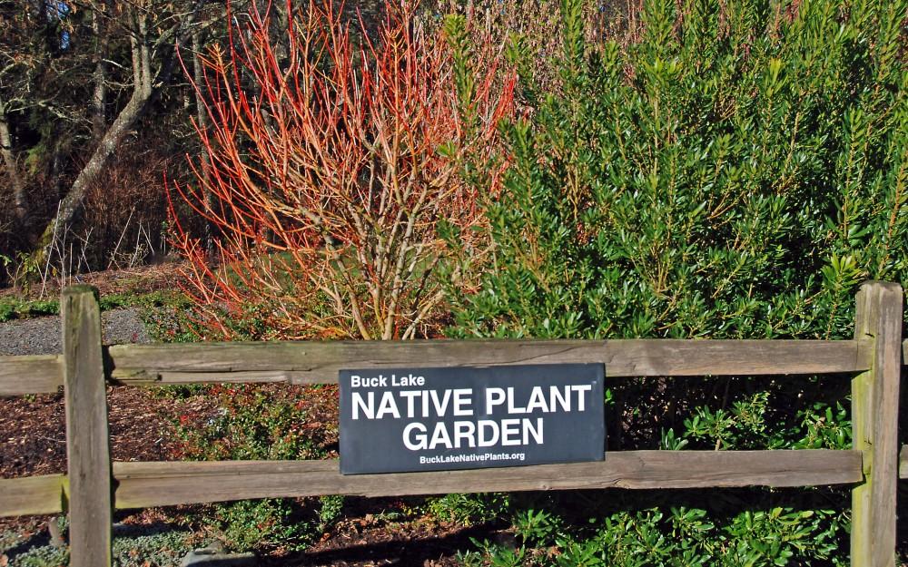 South Entrance to the native plant garden